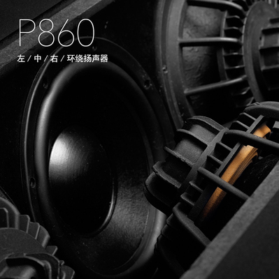 宝仙娜P860